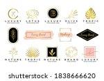feminine luxury modern...   Shutterstock .eps vector #1838666620