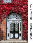 Small photo of Red Boston Ivy or Virginia creeper growing on brick wall of Georgian house (Parthenocissus tricuspidata). Ornate black and white doorway with decorative arch fanlight