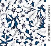 white hawaiian hibiscus... | Shutterstock .eps vector #183924839