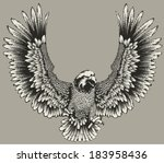 eagle | Shutterstock .eps vector #183958436