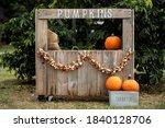 Fall Pumpkin Holiday Orange...