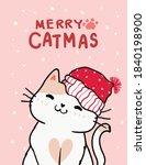 Merry Catmas  Christmas...