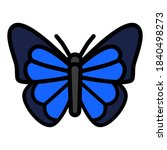 Butterfly Icon Vector...