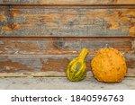 Ornamental Pumpkins In Front Of ...