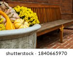 Autumn Gourds In Planter With...