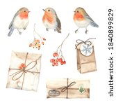 Watercolor Set Of Robin Birds ...