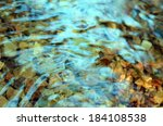 Close Up Of Water In The River