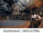 Small photo of dog on the background of the old building. little Jack Russell Terrier in the autumn on the nature