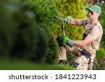 Caucasian Gardener in HIs 40s Trimming Decorative Garden Plants Using Large Pro Scissors. Landscaping Backyard Maintenance. - stock photo