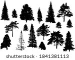 illustration with coniferous... | Shutterstock .eps vector #1841381113