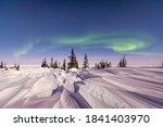 soft northern lights aurora show over sparse spruce trees and wind blown snow drift