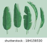 banana leaves | Shutterstock .eps vector #184158530