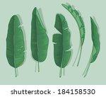 banana leaves | Shutterstock .eps vector #184158530