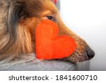 Red Paper Heart Symbol With...