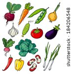 vegetables | Shutterstock . vector #184206548