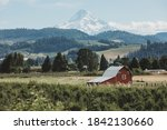 Traditional American Farm With...