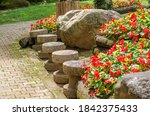 colorful of blooming flowers...   Shutterstock . vector #1842375433