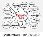 palliative care mind map ...   Shutterstock .eps vector #1842423310