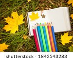 Autumn Leaves And Pencil...