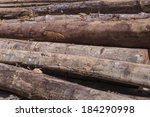 pile of timber logs in malaysia ...   Shutterstock . vector #184290998