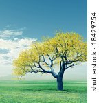 autumn tree | Shutterstock . vector #18429754