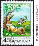 "Small photo of HUNGARY - CIRCA 1987: A stamp printed in Hungary from the ""Fairy Tales "" issue shows The Hare and The Tortoise (Aesop), circa 1987."