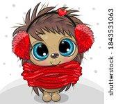 cute cartoon hedgehog in fur... | Shutterstock .eps vector #1843531063