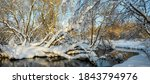 Frosty Winter Scene With Fores...