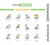 Pet Birds   Modern Line Design...