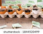 Plantings Seeds In Eggshells...