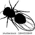 black silhouette of fruit fly ... | Shutterstock .eps vector #1844533849