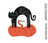 A Black Cute Cat Stands Arched...