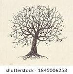 hand drawn oak tree  concept... | Shutterstock .eps vector #1845006253