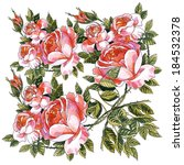 wild and garden roses on a... | Shutterstock . vector #184532378