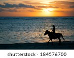 Horse Ride At The Sunset