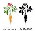 red ginseng emblem. ... | Shutterstock .eps vector #1845769003