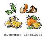 set of orange fruits on white... | Shutterstock .eps vector #1845810373