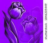 Beautiful And Lush Purple Tulip ...