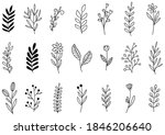 collection forest fern... | Shutterstock .eps vector #1846206640