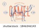 Camel. Template Label. Vintage...