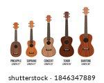 ukulele isolated on white ... | Shutterstock .eps vector #1846347889