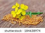 Mustard Flowers With Seeds On...