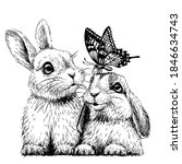 little rabbits with a butterfly.... | Shutterstock .eps vector #1846634743
