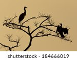 silhouette of blue heron and... | Shutterstock . vector #184666019