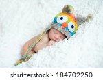 little newborn baby boy 7 days  ... | Shutterstock . vector #184702250