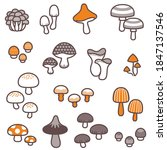 A Variety Of Fancy Mushrooms  ...
