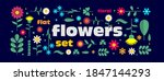 flat vector set of flowers ... | Shutterstock .eps vector #1847144293