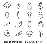 simple set of vegetable related ... | Shutterstock .eps vector #1847375449