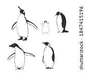 Penguin Animal Icon. Penguin...