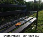 Autumn Yellow Leaf Fell On The...
